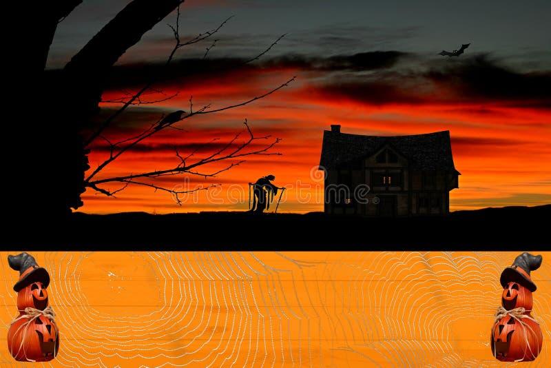 Halloween-Feierhintergrund ein orange Kürbis farbiger Holztisch bedeckt in den spiderwebs mit den Kürbisen, die einen Hexenhut tr stockfotografie