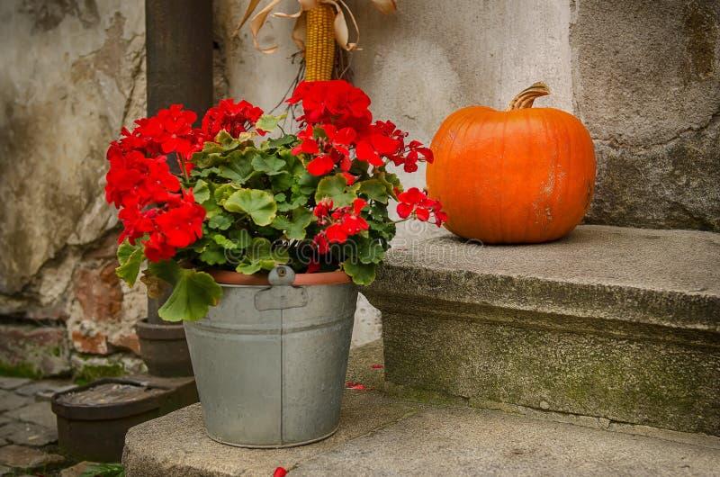 Halloween-Feiertagsdekoration stockfotografie