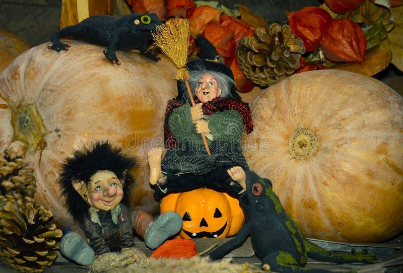 Halloween-Feiertagskonzeptfoto Nette Kürbise und Hexe lizenzfreie stockbilder