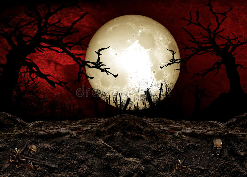 Halloween-Festival stock illustratie