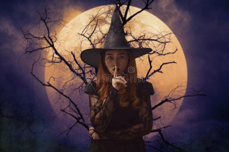 Halloween-Geheimniskonzept stockbild