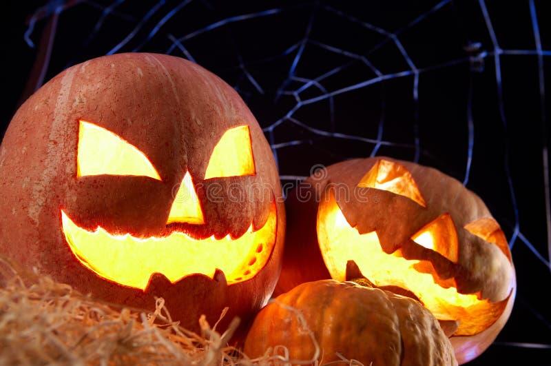 Halloween gourds. Image of Halloween jack o�lanterns with cobweb on background