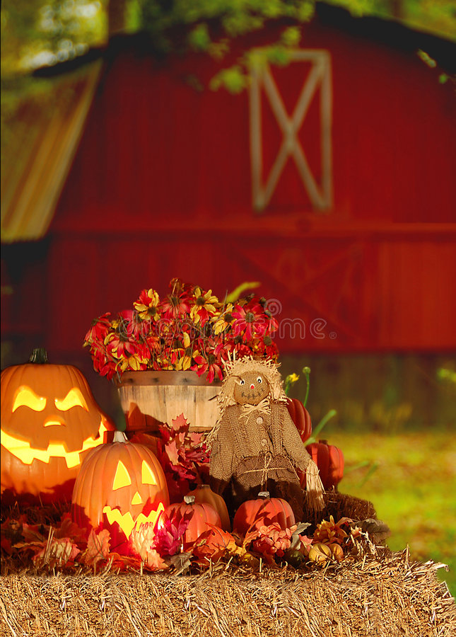 Free Halloween Harvest Stock Photo - 3313060