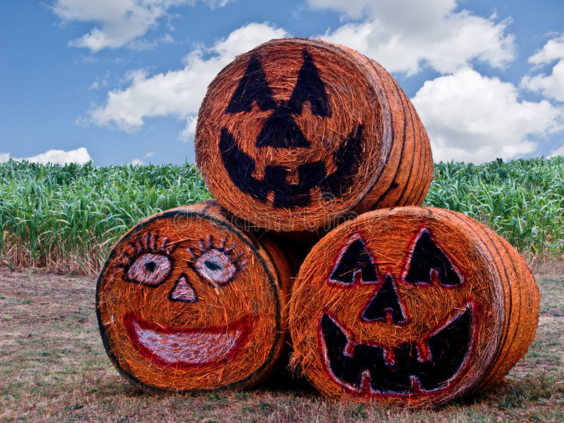 Download Halloween Hay Bales-8291 stock photo. Image of bales, fall - 6713928