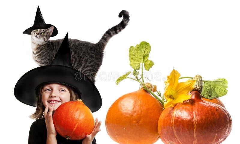 Halloween-heks met een kat stock afbeelding