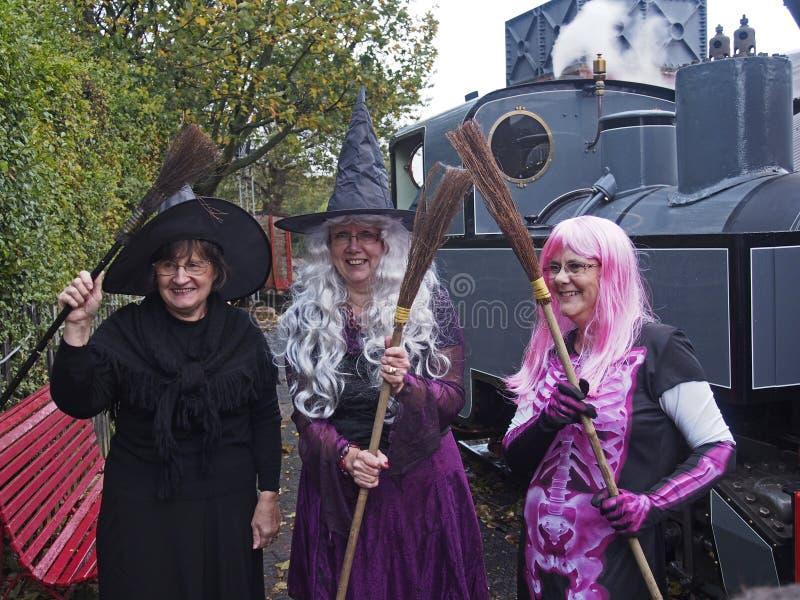 Halloween-heksen stock fotografie