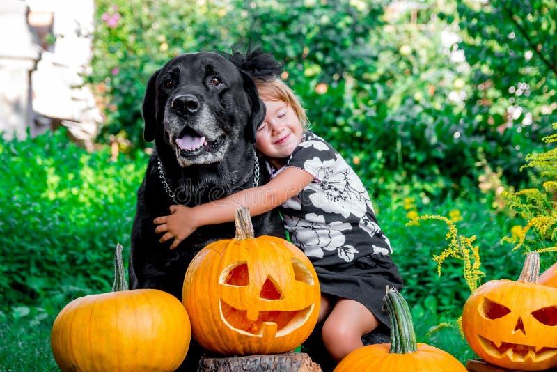 Halloween Het kind kleedde zich in zwarte dichtbij Labrador tussen hefboom-o-lantaarn decoratie, truc of behandelt Meisje met hon stock afbeelding