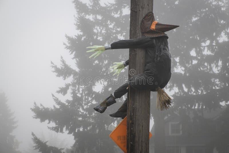 Halloween-Hexe, die in einen Telefonmast zusammenstößt lizenzfreie stockfotos