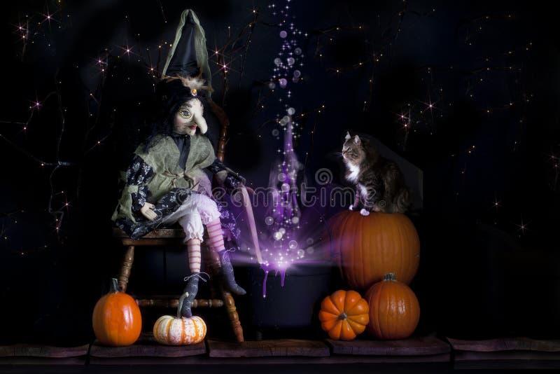 Halloween-Hexe und -katze lizenzfreie stockfotos