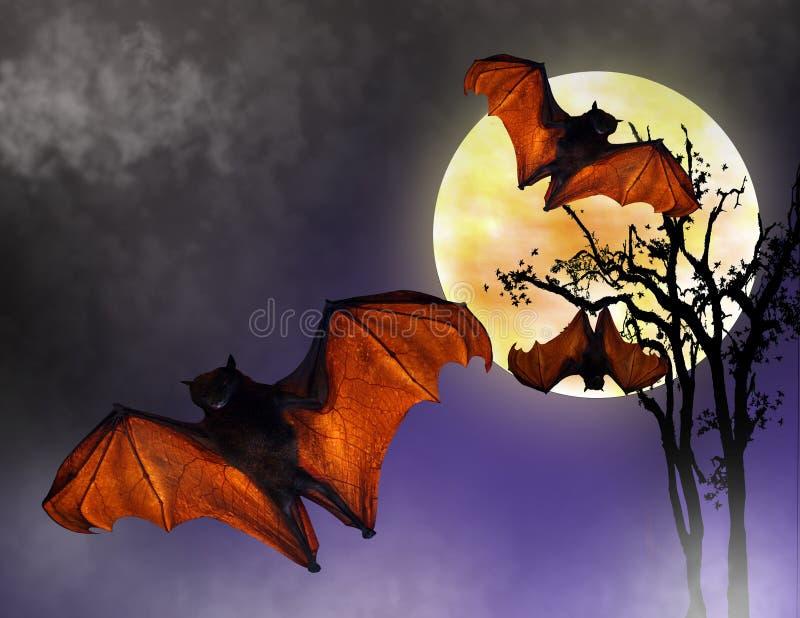 Halloween-Hiebe im Vollmond stock abbildung