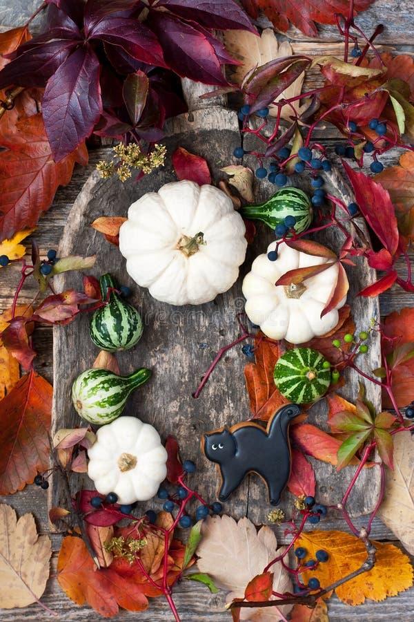 Halloween-Hintergrund mit kleinen Kürbisen und Lebkuchenplätzchen stockfoto