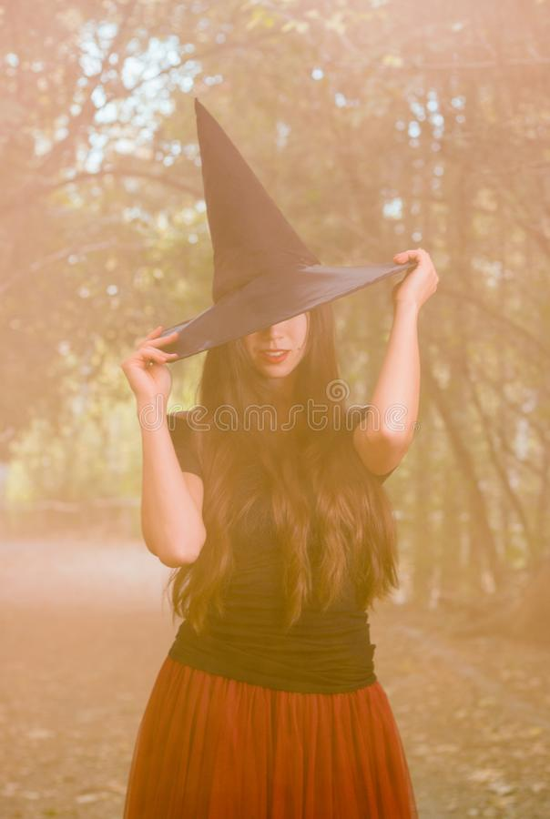 Halloween holiday background. Halloween Witch in a dark forest royalty free stock images