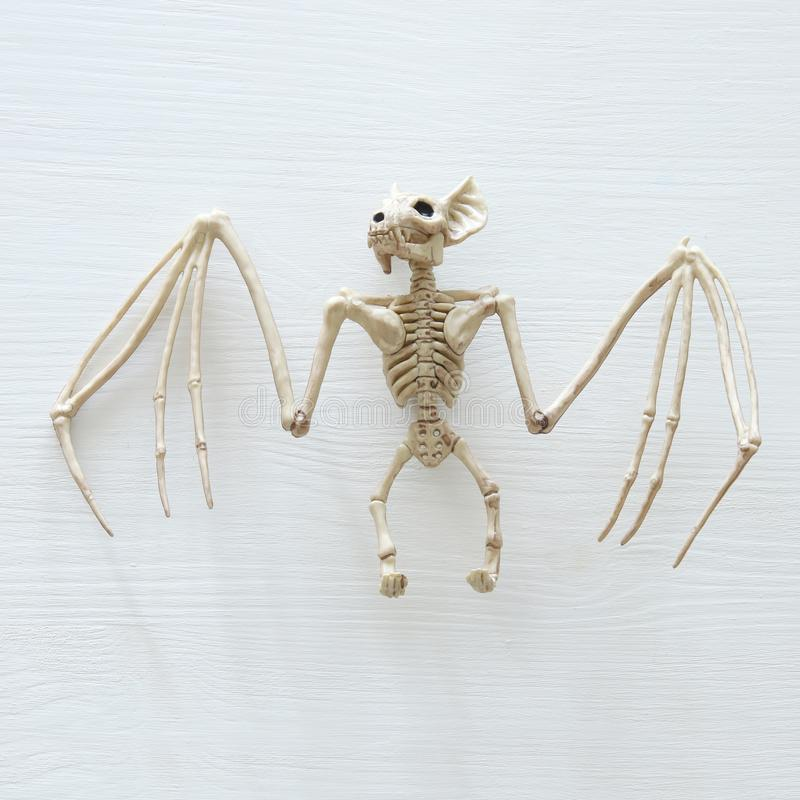Halloween holiday minimal top view image of bat skeleton over white wooden background. royalty free stock image