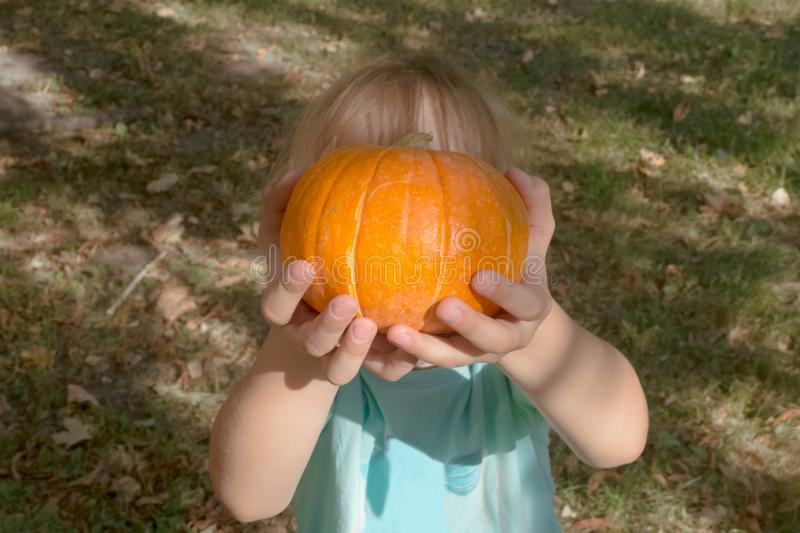 Halloween holiday. A small blonde girl in a blue t-shirt holds a pumpkin in her hands. Make a pumpkin Halloween. Trick or treat. Halloween holiday. A small royalty free stock images