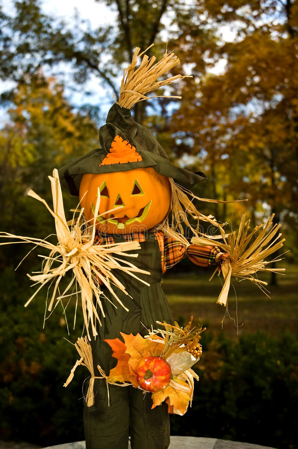 Halloween Jack-o-lanten Scarecrow - 1 royalty free stock images