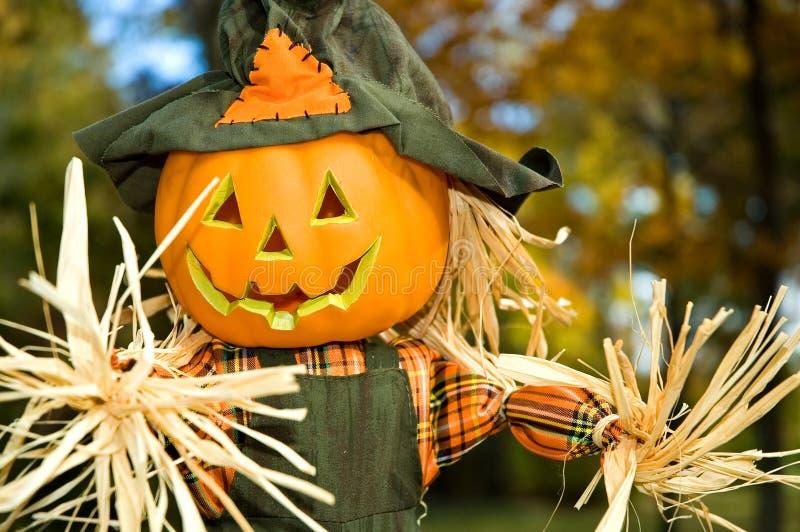 Halloween Jack-o-lanten Scarecrow - 2 royalty free stock image