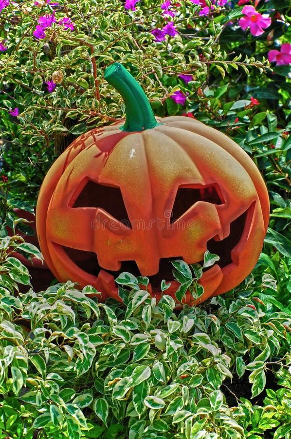 Download Halloween Jack O Lantern Royalty Free Stock Photos - Image: 21743988
