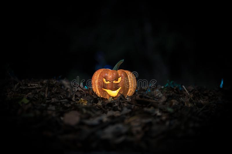halloween jack-o-lantern on autumn leaves. Scary Halloween Pumpkin looking through the smoke. Glowing stock images