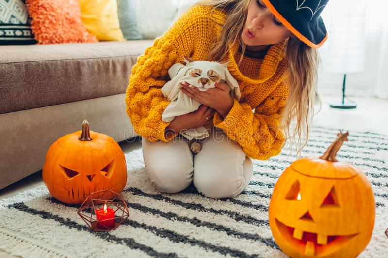 Halloween jack-o-lantern pumpkins. Woman in hat playing with cat wearing ghost clothing on floor decorated with pumpkins royalty free stock images