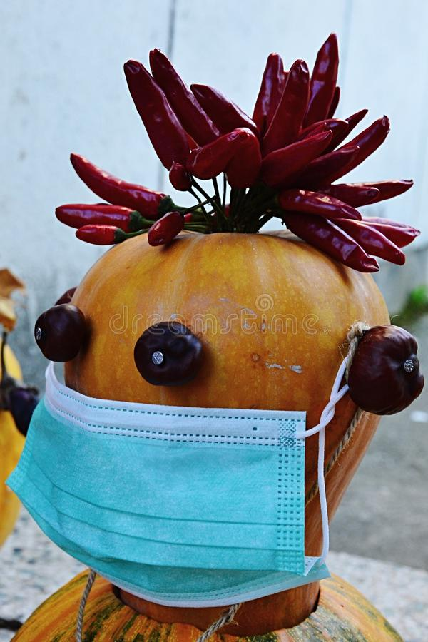 Halloween jack o lantern from whole pumpkins, looking like a doctor with doctor mask on mouth and chili peppers on head, chestnuts stock image
