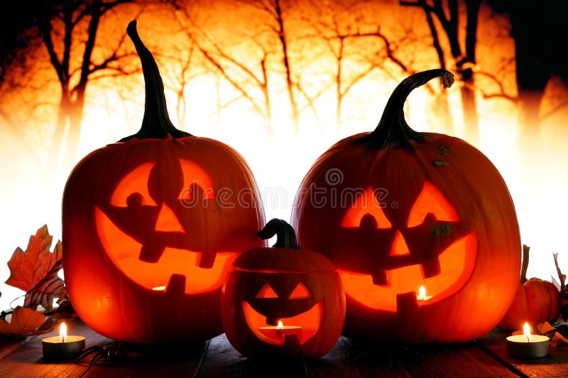 Halloween Jack o Lanterns against spooky orange lit forest. Halloween Jack o Lanterns. Night scene with an orange spooky forest background stock photography