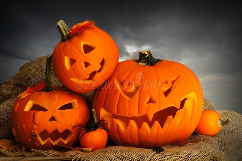 Halloween Jack o Lanterns royalty free stock image