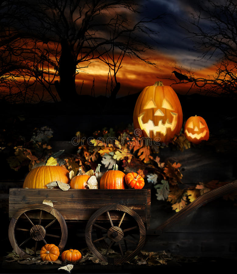 Halloween Jack-O-Laternen lizenzfreie stockfotografie