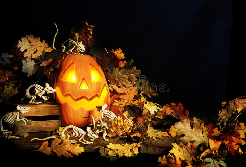 Halloween-Jack-O-Laternen-und -skelett-Mäuse lizenzfreies stockfoto