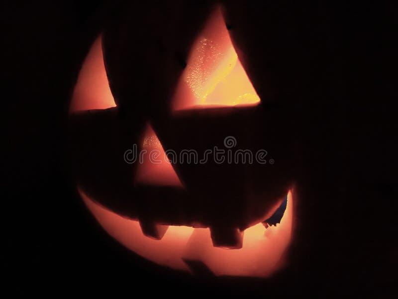 Halloween-Kürbis stockbilder