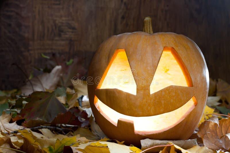 Halloween-Kürbis stockfotos
