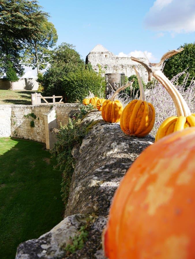 Halloween-Kürbis-Ausrichtung an Rivau-Schloss in Touraine stockfotos