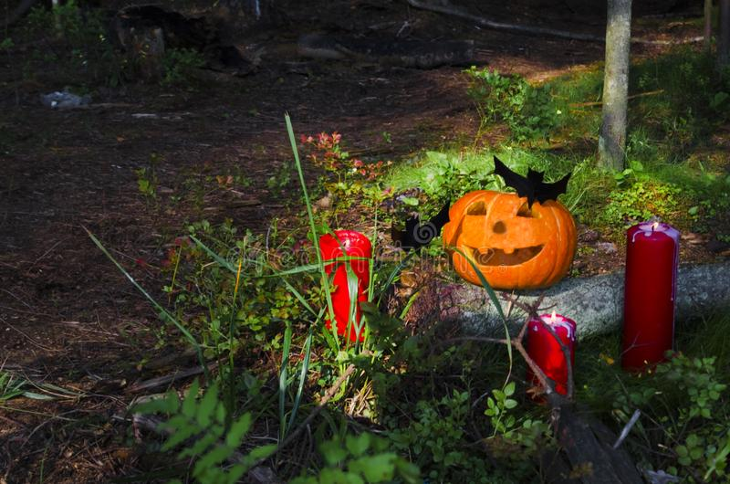 Halloween-Kürbis mit Kerzen, Schläger im Wald auf einem hölzernen Hintergrund witchcraft Westliche Kultur lizenzfreies stockbild