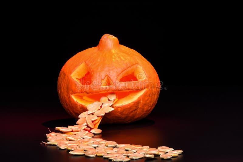 Halloween-Kürbis und -Kürbiskerne lokalisiert auf einem schwarzen Hintergrund stockfotos