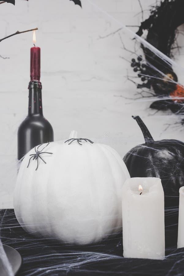Halloween-Kürbise mit Spinnen stockbild