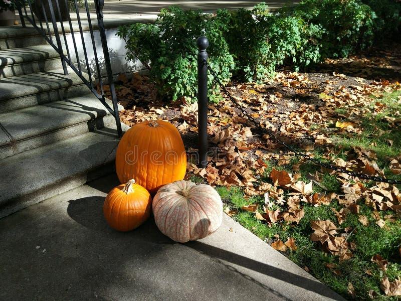 Halloween-Kürbise nahe Haus, Herbstgeist lizenzfreies stockbild