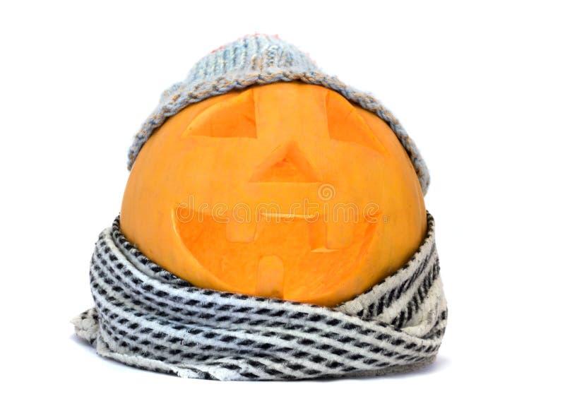 Halloween-Kürbisgesicht mit Hut und Schal stockfotografie
