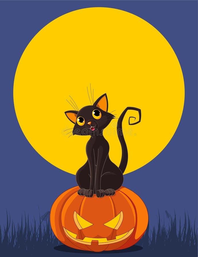 Halloween-Katze auf Kürbis lizenzfreie abbildung