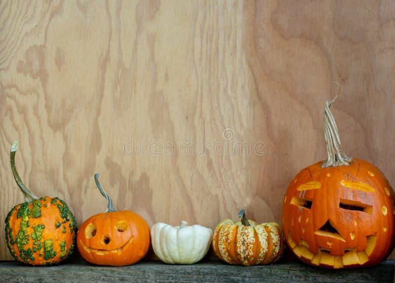 Halloween-Kopienraum mit Kürbisen und Kürbissen stockfotos