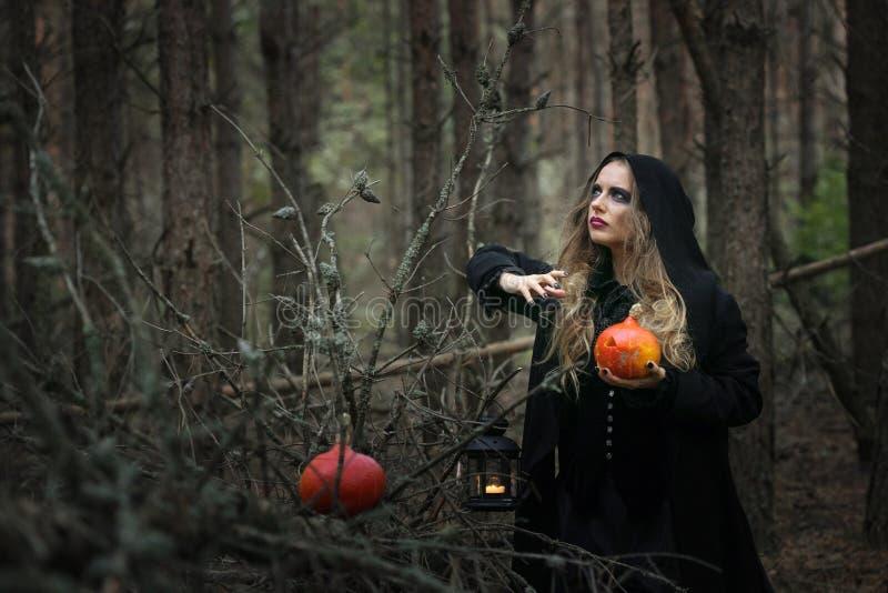 Halloween menina bonita da bruxa em um vestido preto na floresta fotos de stock