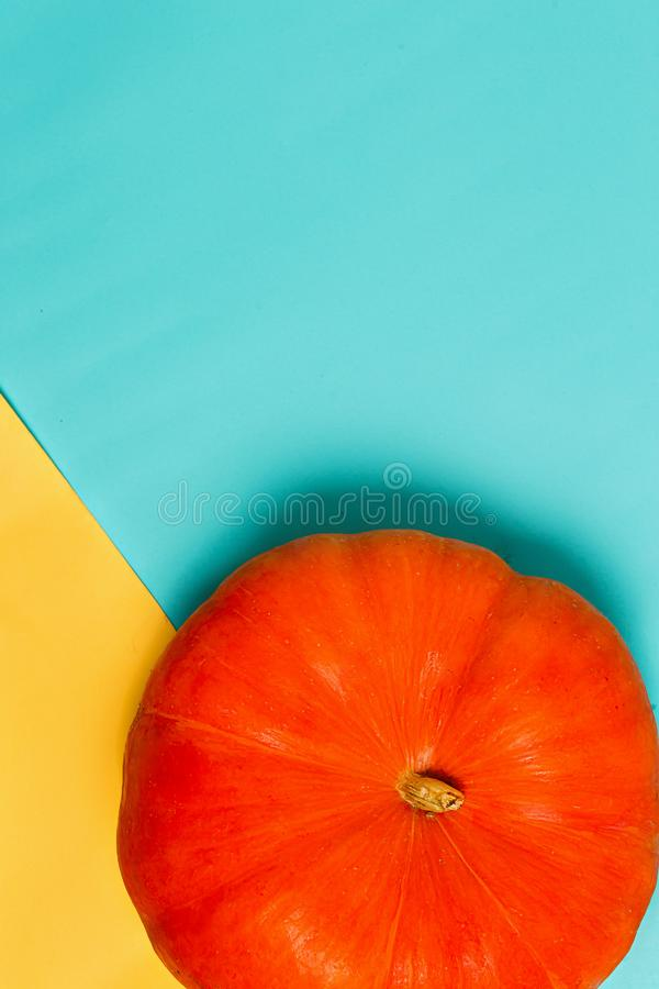 Halloween mit der Orange des reifen Kürbises auf einem Gelben und einem Blau färbte Hintergrund mit Kopienraum Minimal, Herbst, F lizenzfreie stockfotografie
