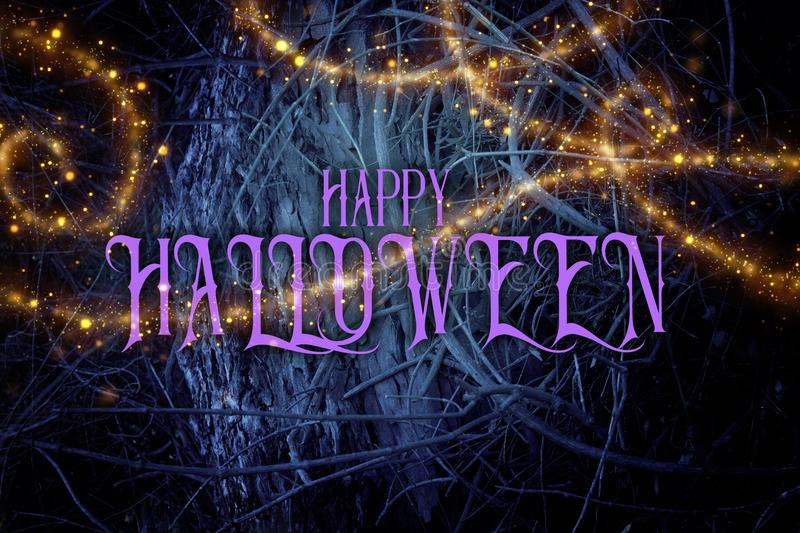 Halloween mysterious background of dark and haunted forest with royalty free stock images