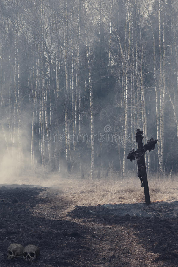 Halloween mystical background with dark forest stock image