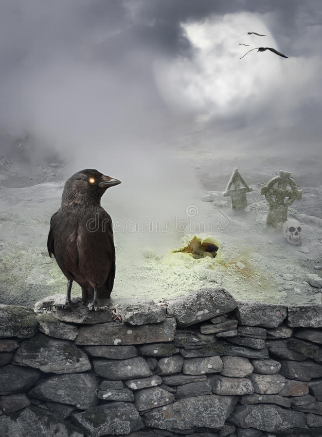Halloween mystical background with raven on stone wall. Halloween mystical spooky background with raven on the stone wall royalty free stock photo