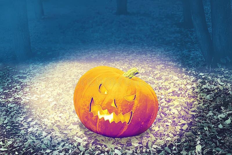 Halloween Mystical Jack O Pompoenlantaarn in een broos bos Spooky Halloween poster Achtergrondbehangselpapier van Halloween met p royalty-vrije stock foto