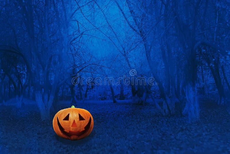 Halloween Mystical Jack O Pompoenlantaarn in een broos bos Spooky Halloween poster Achtergrondbehangselpapier van Halloween met p stock afbeelding