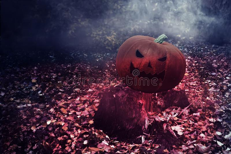 Halloween Mystical Jack O. Pumpkin lantern in a foggy forest. Spooky Halloween Poster. Halloween background wallpaper with pumpkin royalty free stock photography