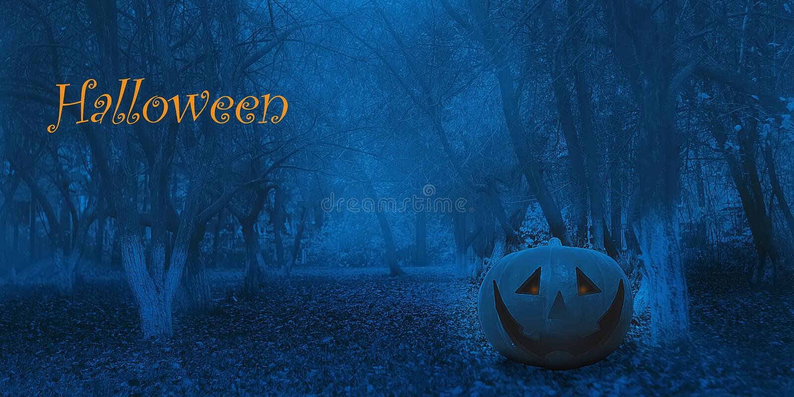 Halloween Mystical Jack O. Pumpkin Lantern in the Forest. Spooky Halloween Poster. Halloween background wallpaper with pumpkin. Jack lantern. The sinister eyes royalty free stock photo