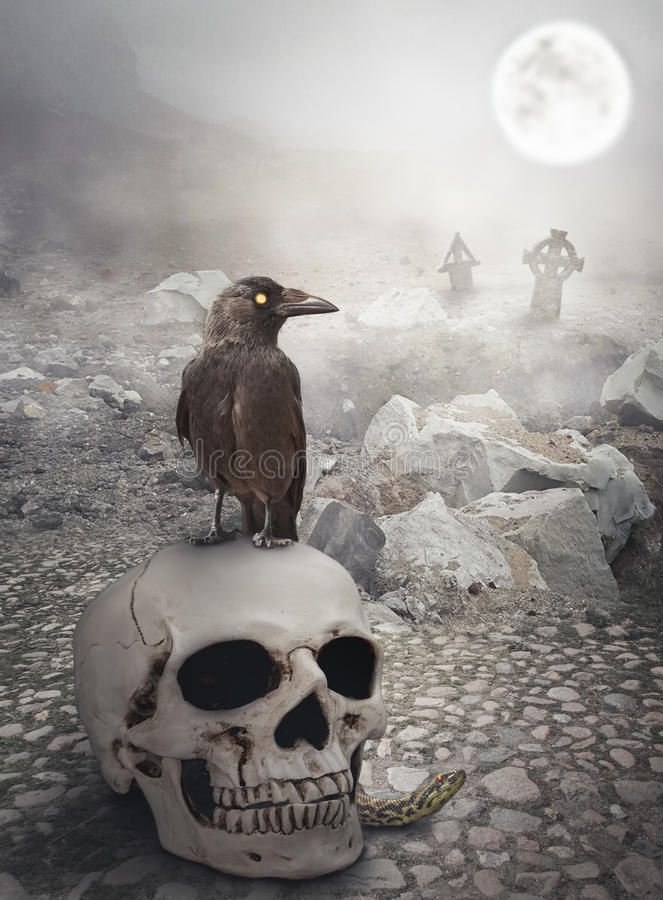 Halloween mystical landscape with skull and crow royalty free stock image