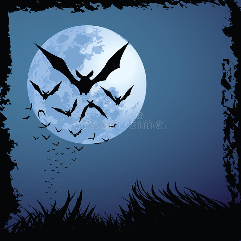 halloween noc ilustracji