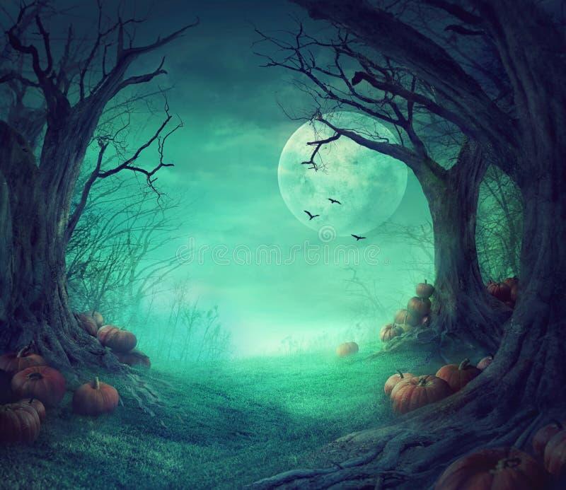 Halloween-ontwerp royalty-vrije illustratie